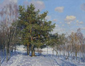 Yaroslav Zyablov. Pines