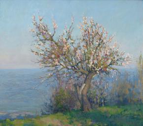 Yaroslav Zyablov. Blossoming apricot tree.