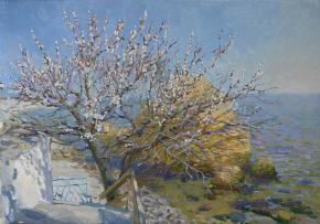 Yaroslav Zyablov. Apricot tree in Otrada.